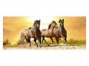 Panoramatická Fototapeta na zeď Koně při západu slunce | MP-2-0227 | 375x150 cm Fototapety
