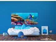 Fototapeta Disney Dory a Nemo FTDNH-5379 | 202x90 cm Fototapety