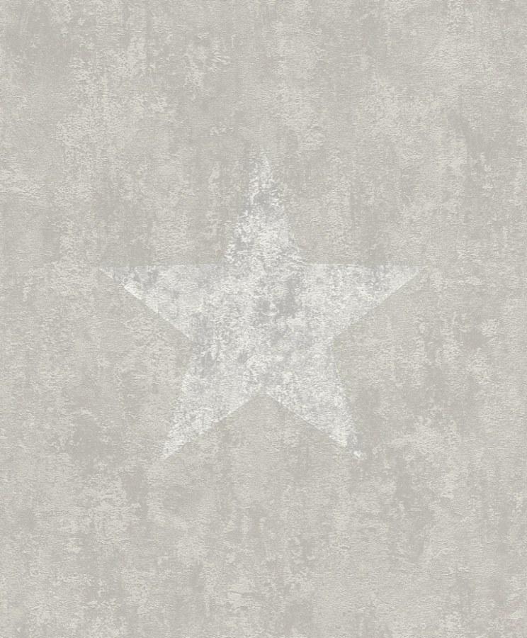 Moderní omyvatelná tapeta s Hvězdou Tapetenwechsel 809312 | lepidlo zdarma - Rasch