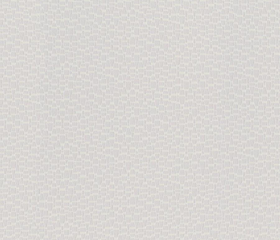Přetíratelná tapeta Bauhaus 325911 | Lepidlo zdarma - Rasch