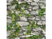 Omyvatelná tapeta kámen s břečťanem 5695-10 | Lepidlo zdarma Tapety Vavex