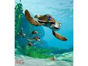 Fototapeta AG Nemo FTDNXL-5110 | 180x202 cm Fototapety