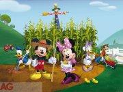 Fototapeta AG Mickey & Minnie FTDNXXL-5029 | 360x270 cm Fototapety
