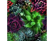 Fototapeta Smart Art Aspiration 46701 | 265 x 270 cm | Lepidlo zdarma Fototapety