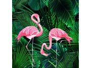 Fototapeta Smart Art Aspiration 46803 | 318 x 340 cm | Lepidlo zdarma Fototapety