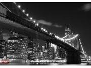 Fototapeta AG Most v Brooklynu FTS-1305 | 360x254 cm Fototapety