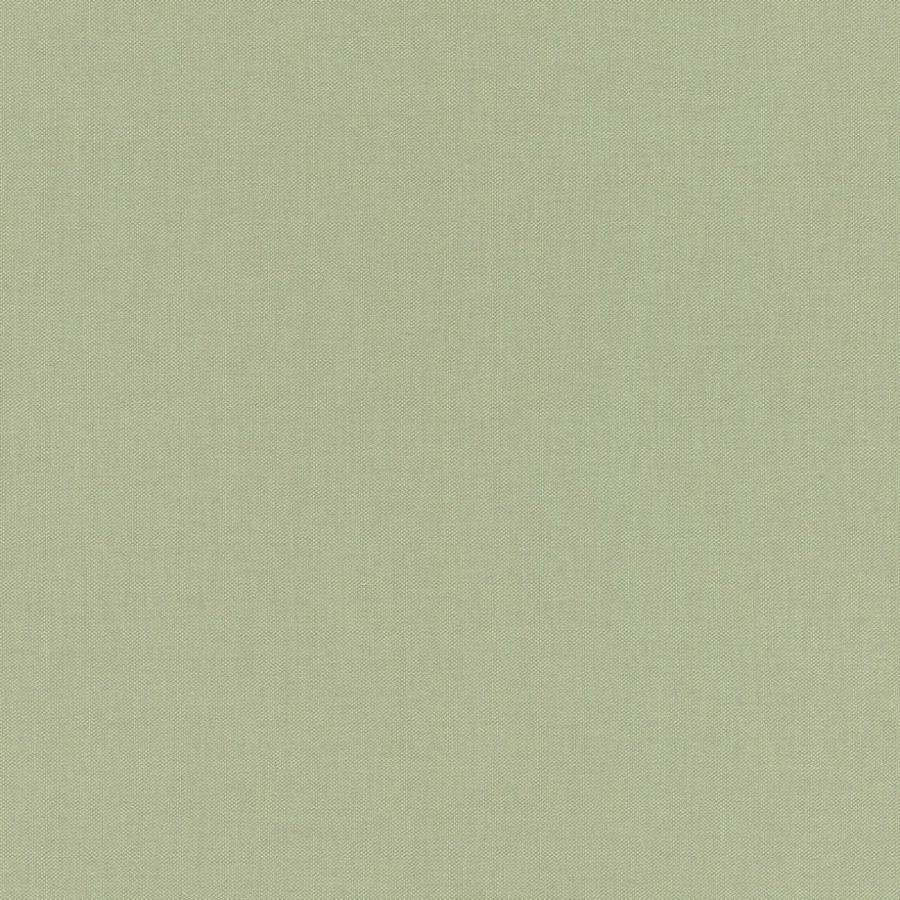 Zelená strukturovaná tapeta Aldora III 423938   Lepidlo zdarma - Rasch