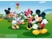 Fototapeta AG Mickey a kamarádi FTDNM-5212 | 160x110 cm Fototapety