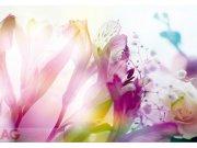 Fototapeta AG Květiny FTXXL-0125 | 360x255 cm Fototapety skladem