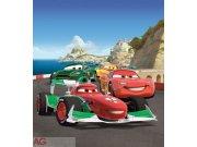 Fototapeta AG Cars FTDNXL-5129 | 180x202 cm Fototapety