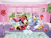 Fototapeta AG Minnie & Daisy FTDXXL-2229 | 360x255 cm Fototapety skladem