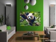 Fototapeta AG Panda FTNM-2610 | 160x110 cm Fototapety