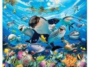 3D Fototapeta Walltastic Moře 43190 | 305x244 cm Fototapety skladem
