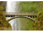 Fototapeta AG Most v přírodě FTXXL-0187 | 360x255 cm Fototapety skladem