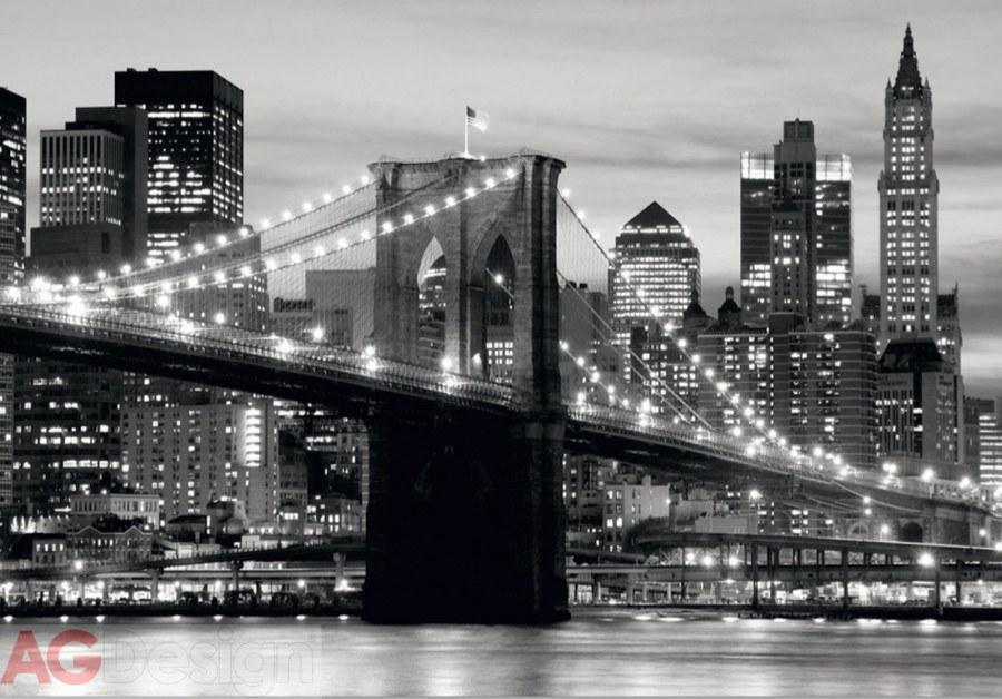 Fototapeta AG Brooklynský most FTS-0199 | 360x254 cm - Fototapety skladem